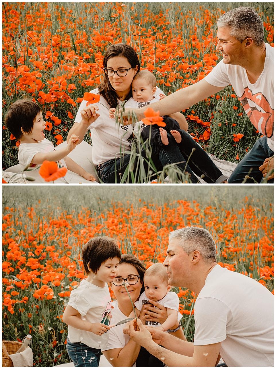 Sesión de familia en campo de amapolas, Olivella